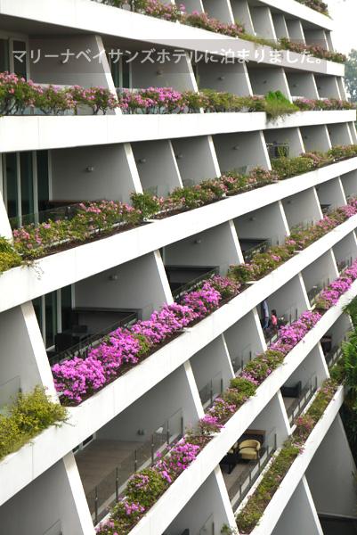 マリーナベイサンズホテルのシービューのベランダ